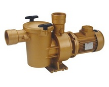 BAIKAL SP 3000 Pump